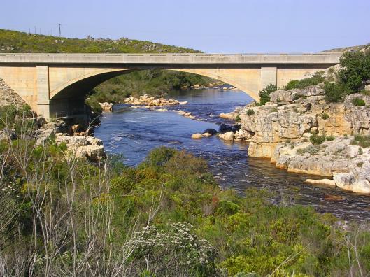 Daar is kinders wat van hierdie brug afspring, my hart wil natuurlik gaan staan!