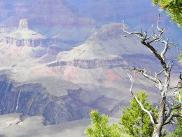 Grand Canyon se South Rim, die lig was baie sleg, en al die foto's het so pers tinge.