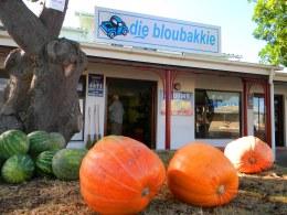 Ourlocal vegatable shop